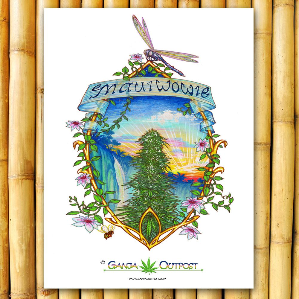 Maui Wowie Pot Posters Retro Cannabis Artwork Ganja