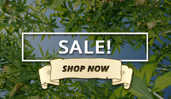 Shop CLearance Marijuana Apparel
