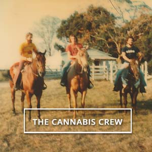 Meet the Original 1970's Cannabis Crew